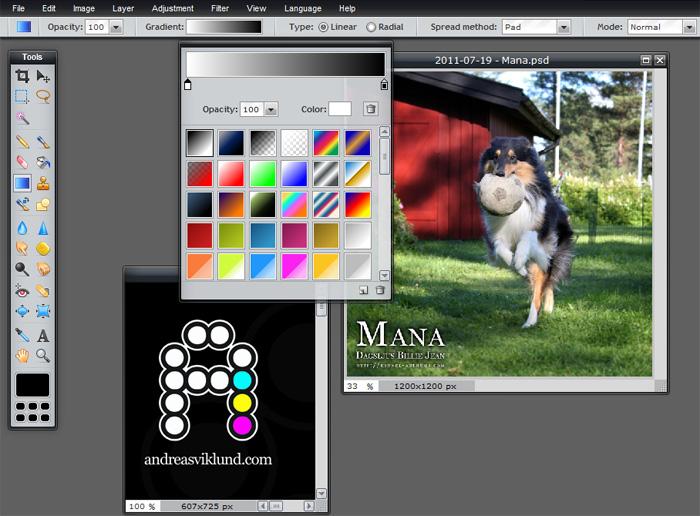 FotoRitocco Online con Pixlr