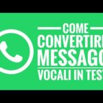 Come convertire il ​​messaggio vocale di WhatsApp su Android in testo