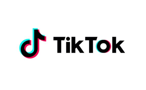 Come cercare utenti TikTok e iscriversi ai loro account